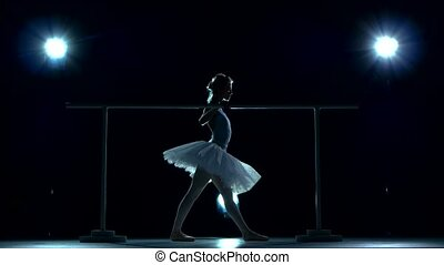 beautiful girl ballet dancer practicing on the barre,...