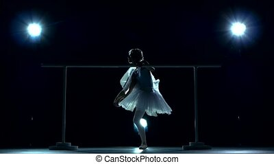 Beautiful young ballerina dancer, blue background -...
