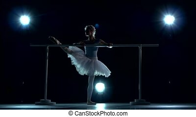A beautiful female ballet dancer. Silhouette