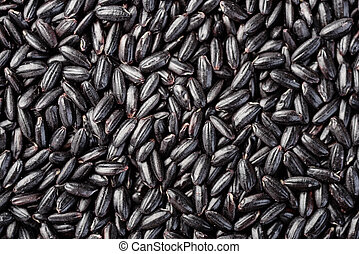 food background of black rice
