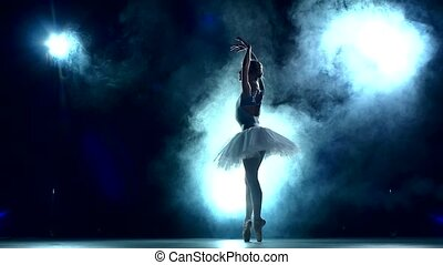 ballet dancer posing on a studio background, slow motion -...