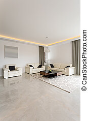 Bright exclusive sitting room in modern residence