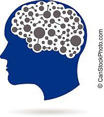 Brain networking.