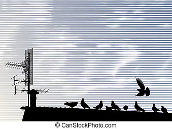 Pigeons on the roof vector