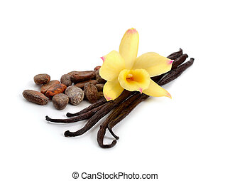 Pods of vanilla and cocoa beans with one yellow orchid....