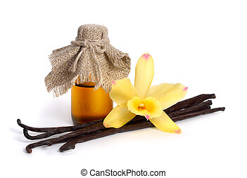 Vanilla essential oil in pharmaceutical bottle with pods and...
