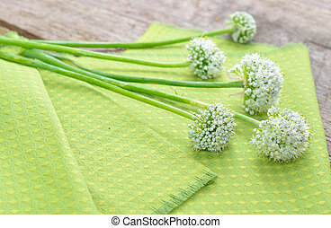 Green background with onions flower.