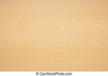 beech wood background