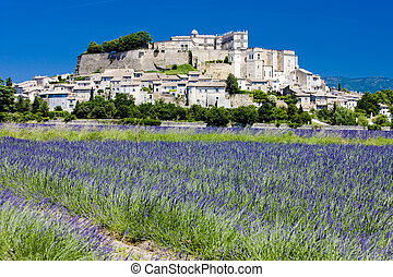 Grignan with lavender field, Dpartement Drme, Rhne-Alpes,...