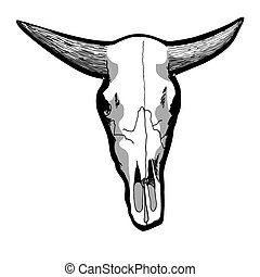 Cow Skull - Hand-drawn cow skull isolated on white, vector...