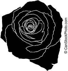 black rose illustration - black rose on white with white...