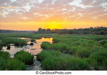 Sunrise at Kruger National Park - Dramatic sunrise at Kruger...
