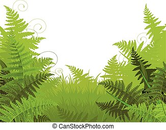 Fern Meadow - Illustration of fern meadow background