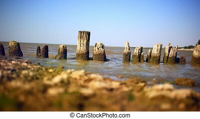 Piles of old wooden bridge on sea coast - Piles of old...