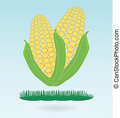 Two ears of corn, grass concept