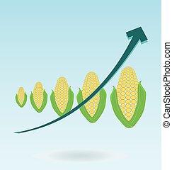 ears of corn, growth chart