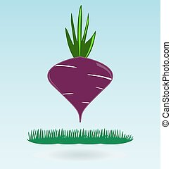 Fresh delicious red beet with green leaves, grass concept