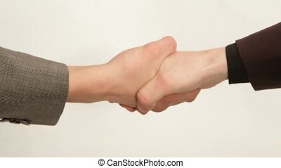 Handshake Means That The Transaction Is Concluded. - Two men...