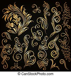 Vector set of floral elements - Set of decorative hand-drawn...