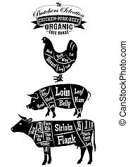 vector diagram cut carcasses of chicken, pig, cow