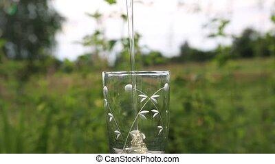 Honey pouring into a glass. - Quality honey pouring a...