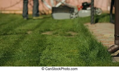 The Lawn In The Back Yard - Front view of a man mowing home...