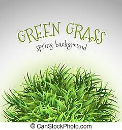 Grass Layout