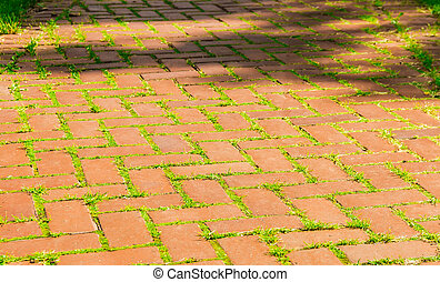 Red brick walkway - Old walkway made of red brick with...