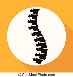icono, Espina dorsal, Diagnósticos, en, blanco,...