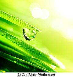 Brillo, agua, gota
