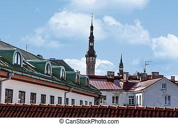 Tallin Walls - Town and church landscape from Tallinn Walls...