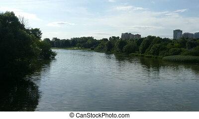 Lake (general plan) and a green bush