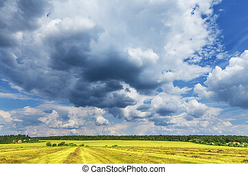 Clouds above the field. - Clouds above the field after the...