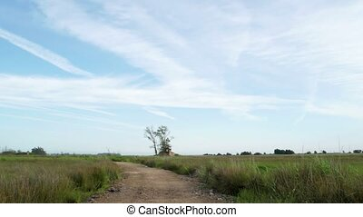 Rural Landscape panoramic view.
