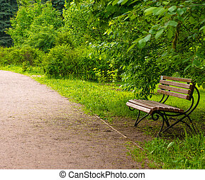 wooden bench at a park - wooden park bench at a park.