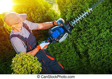 Plants Trimming Works. Gardener with Professional Gasoline...
