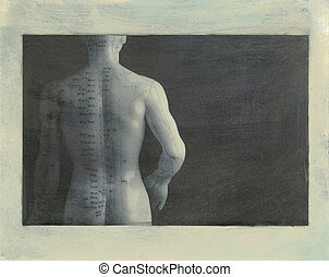 Acupuncture Back - Acupuncture model back. Scan of black and...