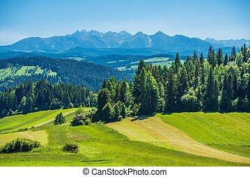 Scenic Tatra Mountains Panorama Taken In Czorsztyn. Summer...