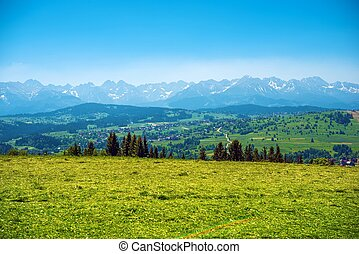 Tatry Panorama Tatra Mountains Panorama and Podhale Lesser...