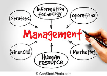 Management mind map business strategy concept