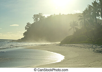 Untouched tropical beach - beautiful scenery a untouched...