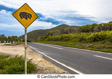 Wombat Crossing - Warning sign for wombat crossing on...