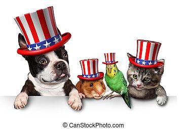 indépendance, jour, animaux familiers,