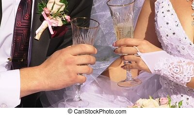 Romantic Picnic - The newlyweds on a romantic picnic. Video...