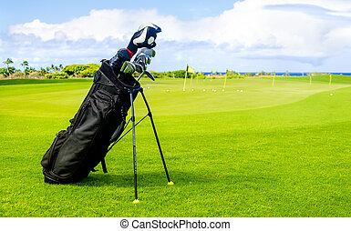 Golf clubs background - Golf background with clubs, in...
