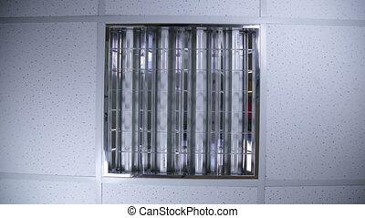 Bank of fluorescent lights - fluorescent lights
