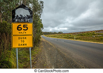 Wombat sign - Warning sign speed limit 65 km-h for wombat...
