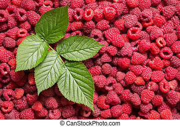 raspberry background with green leaf
