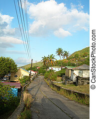 typical street scene with native houses and coconut trees...