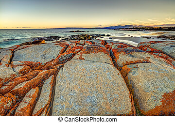 Bay of Fires Tasmania - White sandy beach and orange lichen...
